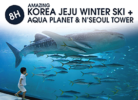 8H KOREA JEJU WINTER SKI WITH AQUA PLANET
